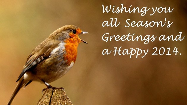 http://timesharegame.com/wp-content/uploads/oth-bird-happy-2014-628x353.jpg