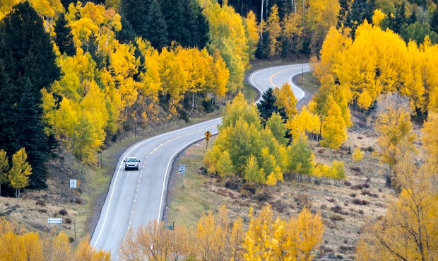 Fall colors brighten this Colorado scenic drive